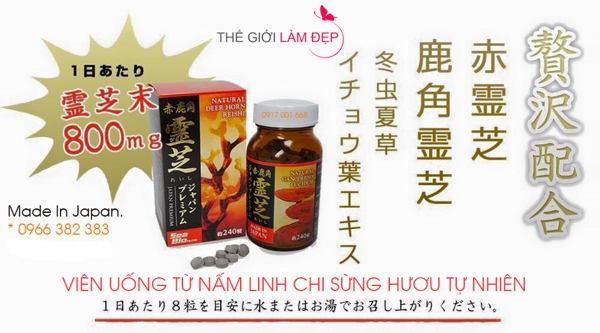 nam-linh-chi-sung-huou-nhat-ban-240-vien-05-01
