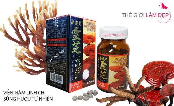 nam-linh-chi-sung-huou-nhat-ban-240-vien-07-1